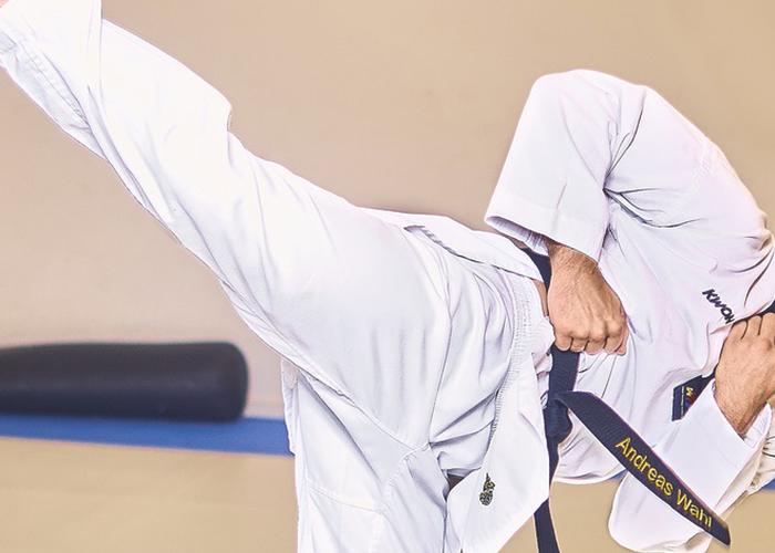 Tri Star Taekwondo London